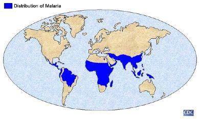 Malaria_dis